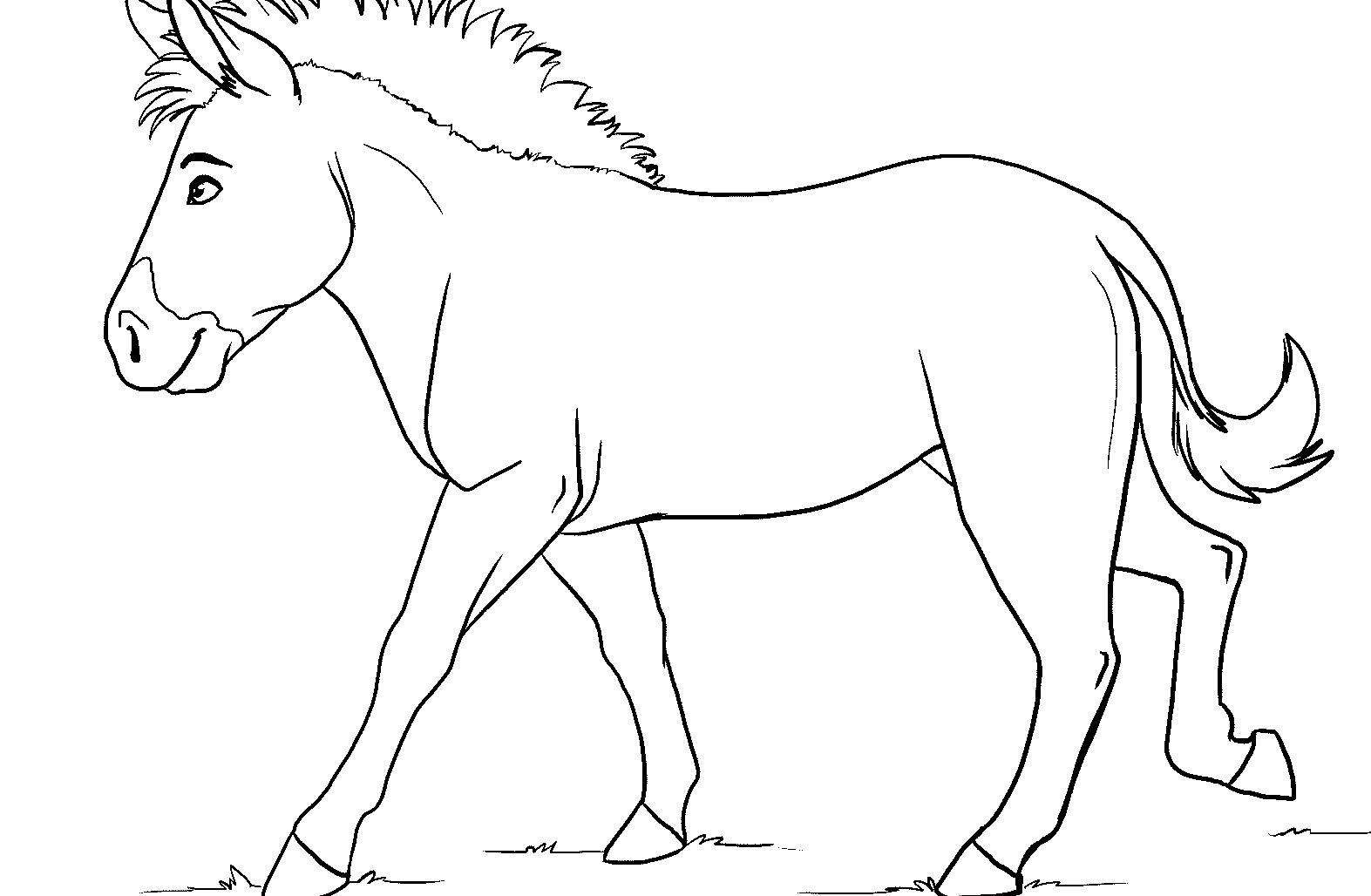 zebra without stripes sketch coloring page